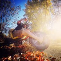 Autumn High Roller